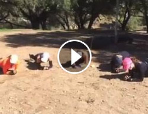 Day 3 of the Muddy Warriors Plank Challenge – Don't Wish for it Work for it!